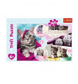 Slagalica 160 Kittens