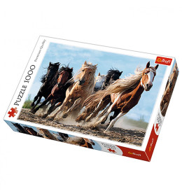 Slagalica 1000 Horses