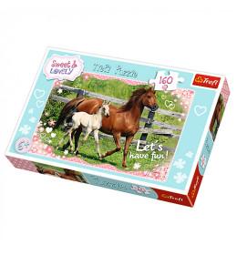 Slagalica 160 Horses