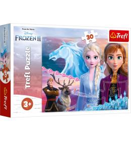 Slagalica 30 Frozen II